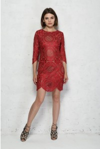 Red Embroidered Lace Mini Dress