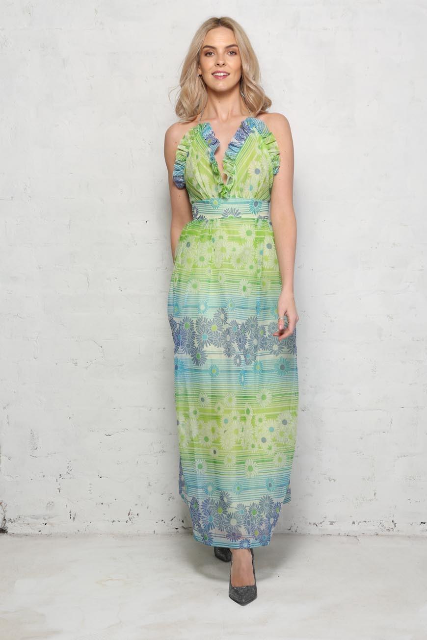 1970s daisy maxi dress